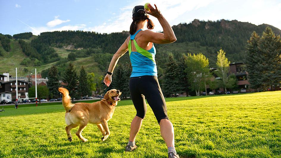 Exercício para animais de estimação
